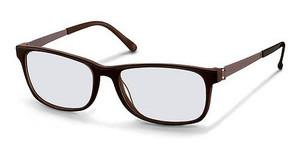 Rodenstock R5261 D brown
