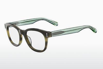 Brille Dragon DR153 SAM 340 - Grün