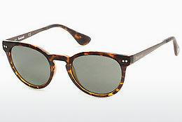 Sonnenbrille Timberland TB9085 53R - Havanna, Yellow, Blond, Brown