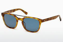 Sonnenbrille Web Eyewear WE0156 53V - Havanna, Yellow, Blond, Brown