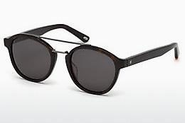 Sonnenbrille Web Eyewear WE0169 52A - Braun, Havanna