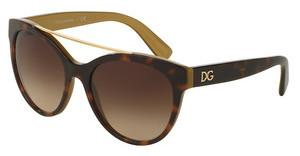 Dolce & Gabbana DG4280 295613 BROWN GRADIENTTOP HAVANA ON GOLD