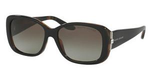 Ralph Lauren RL8127B 52608E GREY/GREEN GRADIENTTOP BLACK-HAVANA JERRY