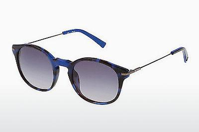 Sonnenbrille Sting SS6579 0NK3