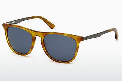 Sonnenbrille Web Eyewear WE0160 53V - Havanna, Yellow, Blond, Brown