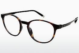 Brille Charmant ZT19855N DB