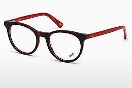 Brille Web Eyewear WE5251 B56 - Havanna