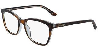 Calvin Klein CK19529 251 SOFT TORTOISE/LIGHT BLUE