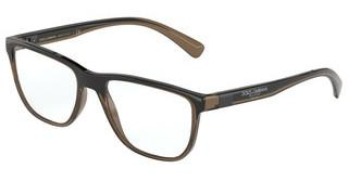 Dolce & Gabbana DG5053 3259 TRANSPARENT BROWN/BLACK