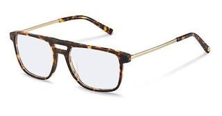 Rocco by Rodenstock RR460 C havana, light gold