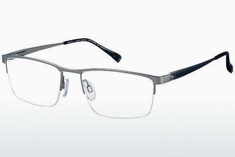 Brille Charmant CH29500 GR