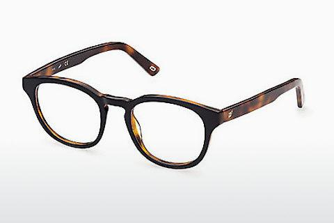 Brille Web Eyewear WE5346 005