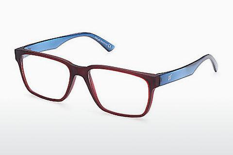 Brille Web Eyewear WE5355 091