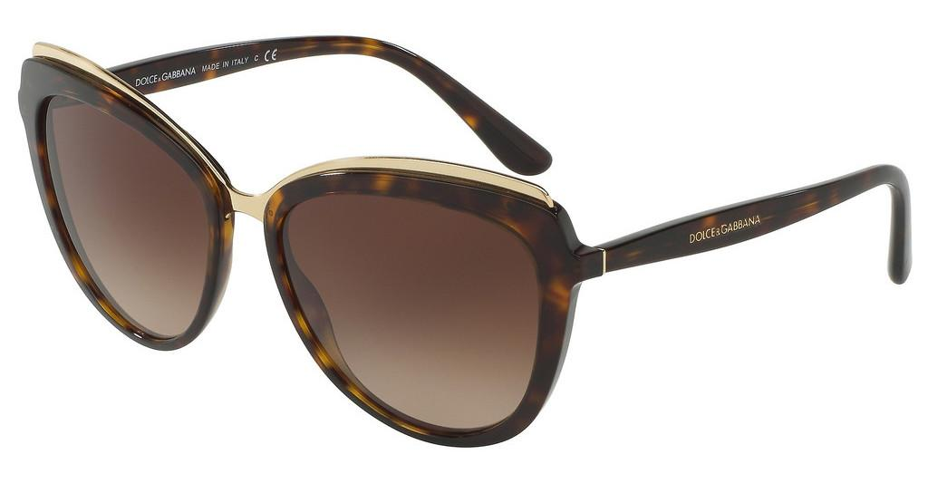 Dolce & Gabbana   DG4304 502/13 LIGHT & DARK BROWN GRADIENTHAVANA