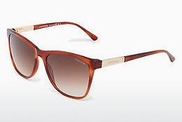 Sonnenbrille Comma 77057 60 - Orange