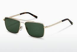 Sonnenbrille Rocco by Rodenstock RR104 B