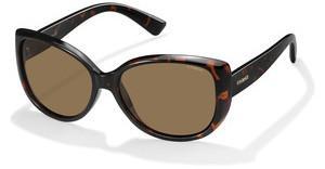 Polaroid PLD 4031S Q3V IG Sonnenbrille Damenbrille Polarized hzW6MP4