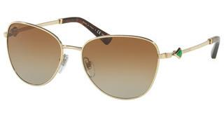 Bvlgari BV6097KB 2041T5 POLAR BROWN GRADIENTPALE GOLD PLATED