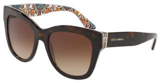 Dolce & Gabbana DG4270 317813 BROWN GRADIENTHAVANA ON NEW MAIOLICA