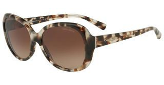 Giorgio Armani AR8047 565813 BROWN GRADIENTHAVANA BEIGE/BROWN