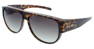 HIS Eyewear HP89101 1