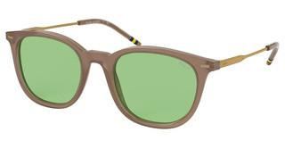 Polo PH4164 5538/2 VINTAGE GREENSHINY OPALINE TAUPE
