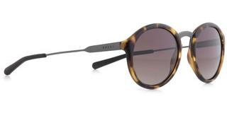 SPECT PASADENA 001P brown gradient POLhavanna