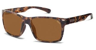 Zeal BREWER 10516 COPPERCOLORADO TORTOISE